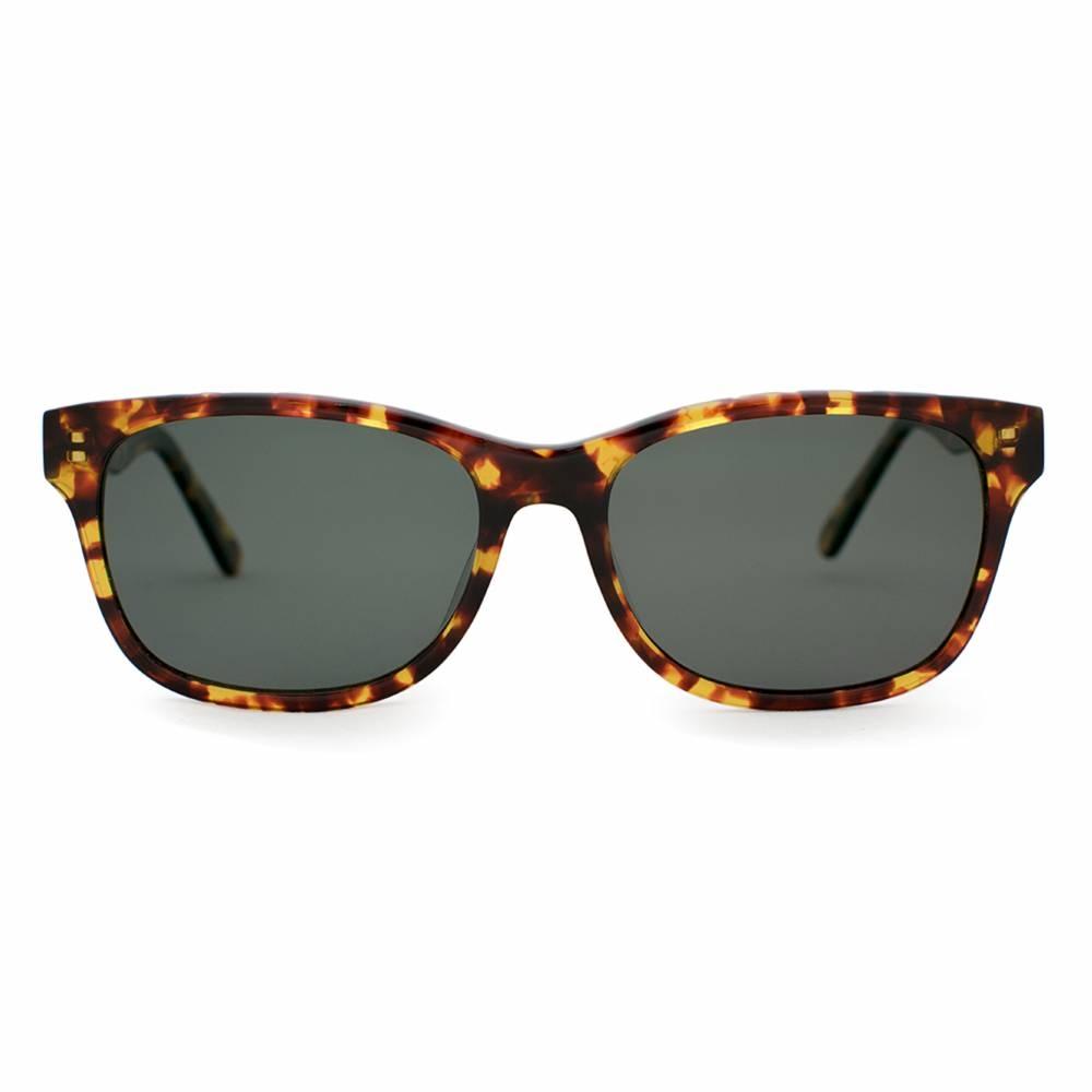 Polarized Acetate Sunglasses   Windemere Tortoise   Parkman