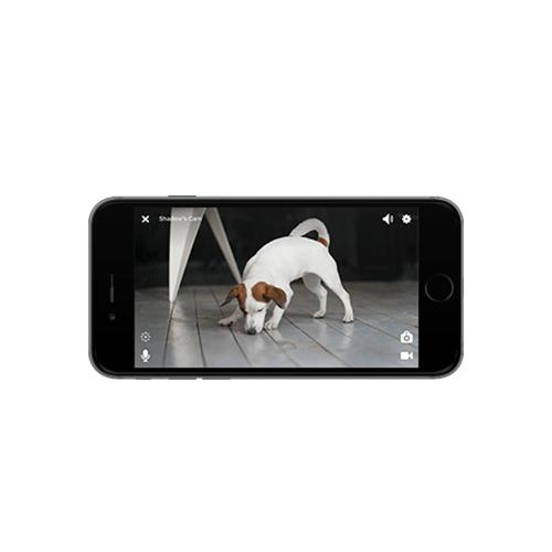 Petcube Play | Black | Watch and talk to your pet