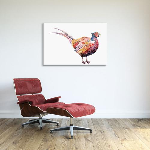 Pheasant | Becksy