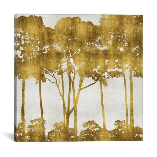 Tree Lined In Gold I